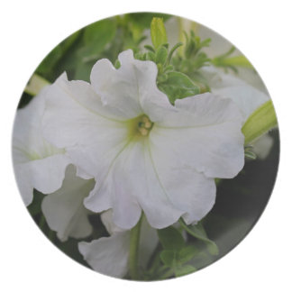 White Petunia Party Plate