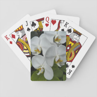 White Phalaenopsis Orchids Floral Poker Deck