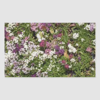 White, Pink And Mauve Flowers Sticker