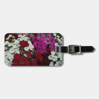 White, Pink and Red Dianthus Floral Photography Luggage Tag