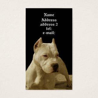 White pitbull business card