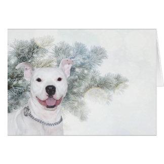White pitbull Christmas Card