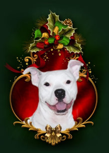 Pitbull Christmas Ornament.Pitbull Ornaments Christmas Ornaments Zazzle Ca