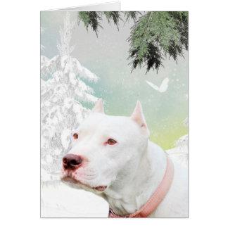 White pitbull in snow greeting card