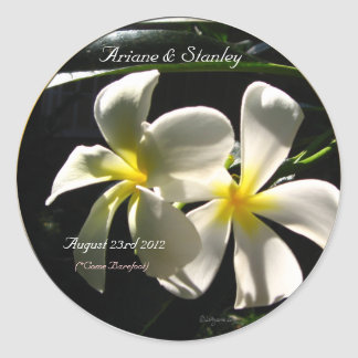 White Plumaria Tropical Flowers Envelope Seals