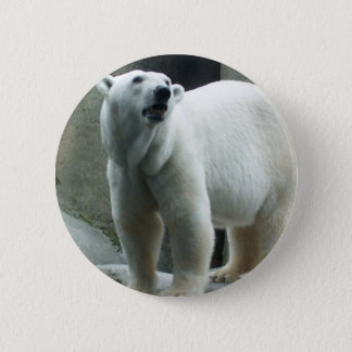White Polar Bear Button
