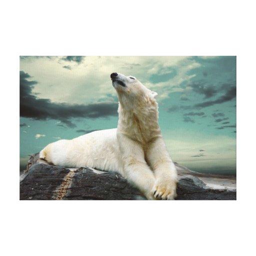 White Polar Bear Hunter on rock Stretched Canvas Print