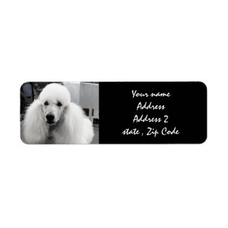 White Poodle Address Labels