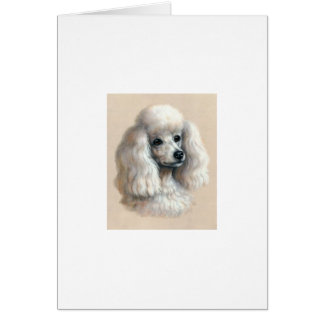 White Poodle Card