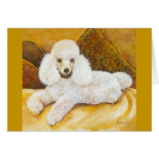 White Poodle Portrait Card