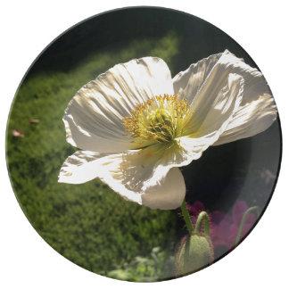 White Poppy Fine Porcelain Plate