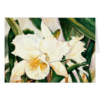 WHITE PRINCESS-Orchid 2.95 Card