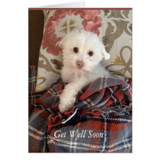 White Puppy Under a Blanket Get Well Soon Card
