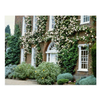 white Queen Anne House With Climbing Rose Cecile B Postcard