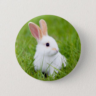 White Rabbit 2 Inch Round Button