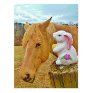 White rabbit and blond yellow horse postcard
