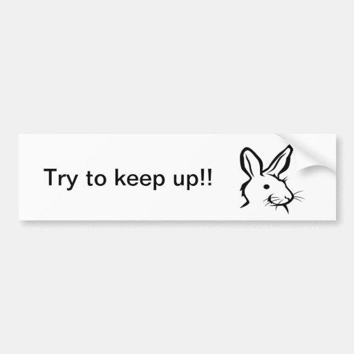 White Rabbit Bumper Sticker