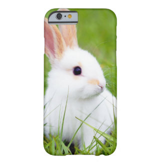 White Rabbit Barely There iPhone 6 Case