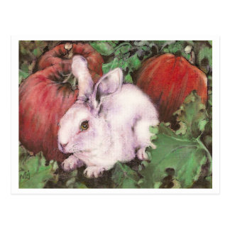 White Rabbit in the Pumpkin Patch Postcard