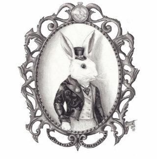 White Rabbit Photo Sculpture Alice in Wonderland