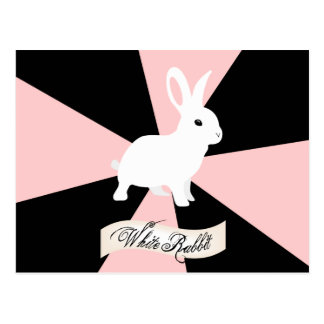 White Rabbit, Pink, Black and White Postcard