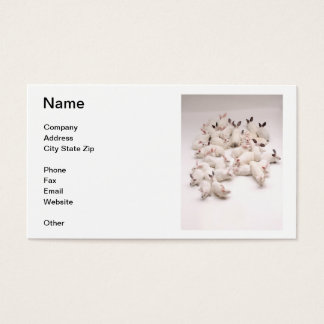 White Rabbits Business Card