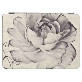 White Ranunculus Flower Black Background iPad Air Cover