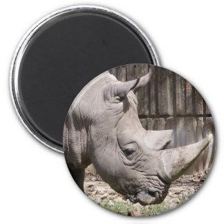 white rhino 2 inch round magnet