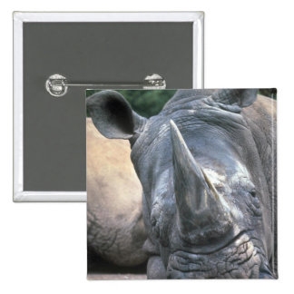 White Rhino 2 Inch Square Button