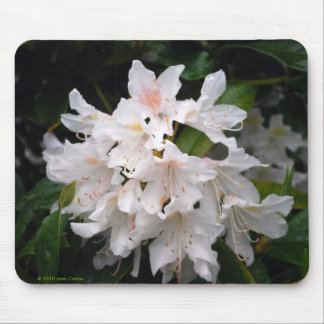 White Rhododendron Mousepad