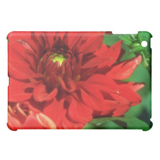 White Rich red flowers iPad Mini Cases