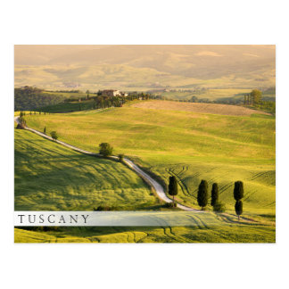 White road in Tuscany landscape bar postcard