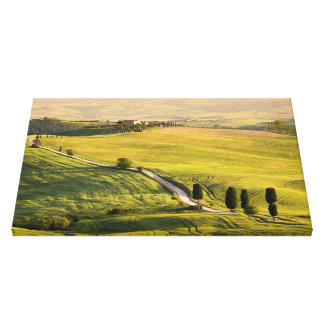 White road in Tuscany landscape canvas print