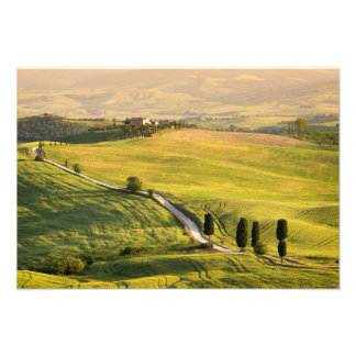 White road in Tuscany landscape photo print