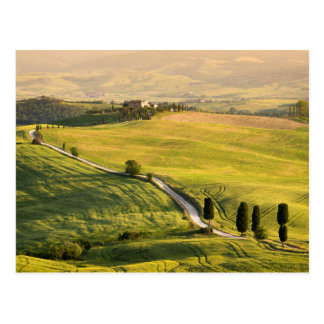 White road in Tuscany landscape postcard