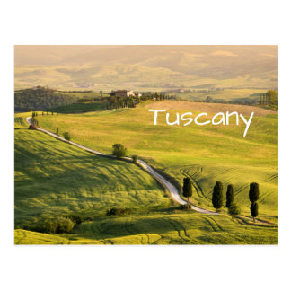 White road in Tuscany landscape text postcard