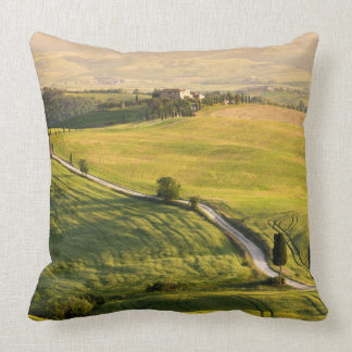 White road in Tuscany landscape throw pillow