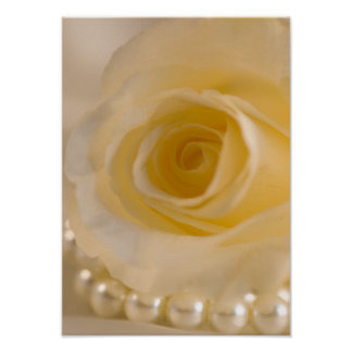 White Rose and Pearls Poster