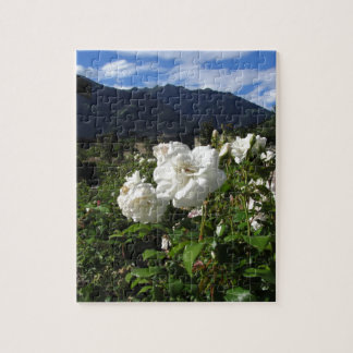 White rose blooms on a mountain background puzzle