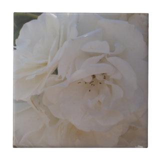 White Rose Ceramic Tiles