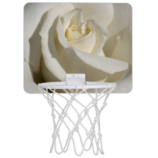 White Rose Close-Up Mini Basketball Hoop