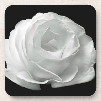 White Rose Coaster
