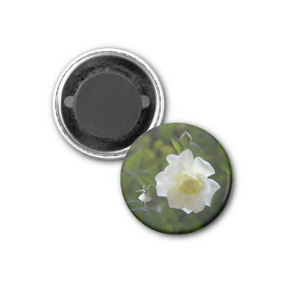White Rose Fairy Magnet