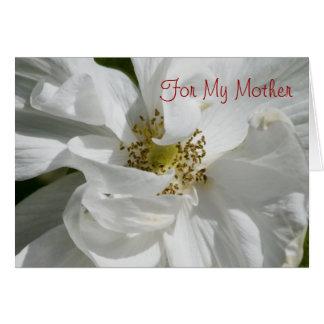 White Rose for Mom Card