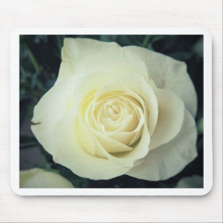 White Rose Mug Mouse Pad