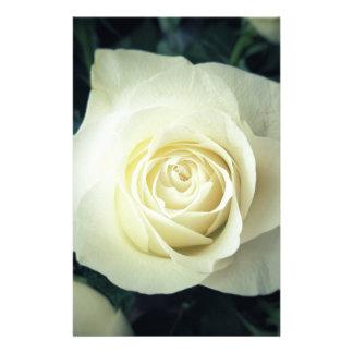 White Rose Mug Stationery
