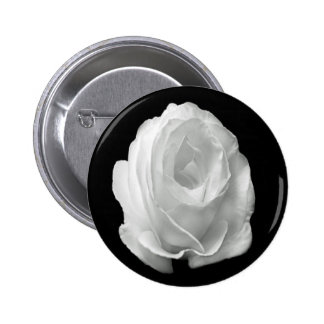 white-rose-on-the-black-background 2 inch round button
