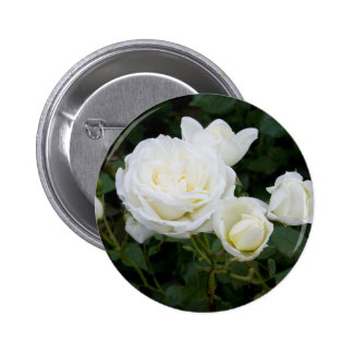 White Roses Pins