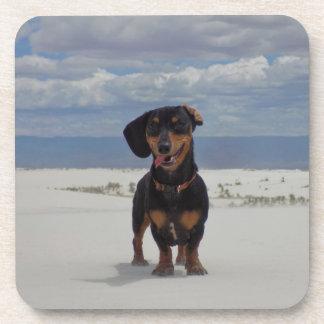 White Sands Coaster