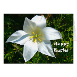 WHITE SATINY LILY / HAPPY EASTER GREETINGS GREETING CARD